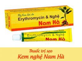 Kem nghệ Nam Hà